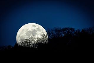 十四日月ーNight before the full moon