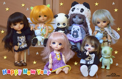 Happy New Year!!!! (❀> Lily <❀) Tags: bid family lati yellow lea peter pan steamland jia little angel sweeties soom pandy pet marshmallow happy cinderella version collection sunny master dragons pukifee pongpong pong dragon sophie legend latidoll mod lol new year