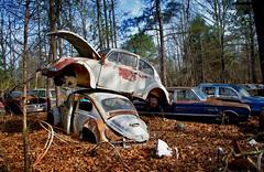 Paradise Rust II (4) (One_Track) Tags: alabama junk rusty bug beatle abandoned volkswagen