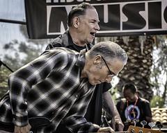 John Bazz and Robert Gordon (Steve Mitchell Gallery) Tags: people men music rockabilly blues roots concert concerts singers bass bassist robertgordon johnbazz