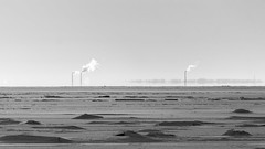 Chilling mirage (Suicidal_zombie) Tags: russia russie saintpetersburg stpetersburg saint petersburg russland black white bw monochrome monotone winter winterscape snow cold frost chill finnish gulf komarovo beautiful backlight contre ajour mirage