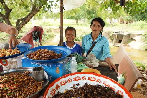 Purveyors of Fried Insects