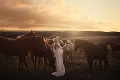Stay wild with me (aleah michele) Tags: girl gold golden glow goldenhour hands heart horizon horse horses vulnerable vibrant forest field fantasy conceptual concept calm color chill