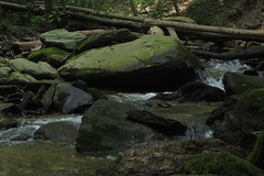 creek (Molly Des Jardin) Tags: park wood trees usa wet water rock stone creek forest flow waterfall moss rocks state pennsylvania stones logs rocky running boulder boulders fallen lancaster trunk algae 2014 susquehannock drumore 43215mm
