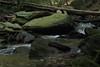 creek (Molly Des Jardin) Tags: park wood trees usa wet water rock stone creek forest flow waterfall moss rocks state pennsylvania stones logs rocky running boulder boulders fallen lancaster trunk algae 2014 susquehannock drumore 43215mm