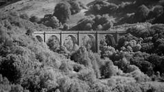 Viaduc de Barajol (cyril4494) Tags: bridge stone de pierre pont es auvergne voie ferre montagnes viaduc riom cantal lugarde barajol