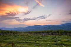 Countryside from Romania. (mihaipiscureanu) Tags: sunset sky green colors landscape nikon romania d700