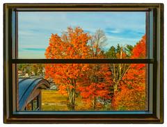 Ablaze (Timothy Valentine) Tags: autumn window wednesday us unitedstates massachusetts large foliage weymouth 1015 2015 leafpeeping