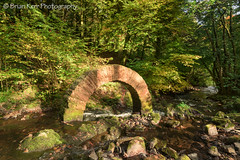 Golden Arch (.Brian Kerr Photography.) Tags: scotland arch dumfriesandgalloway andygoldsworthy drumlanrigcastle sonyalpha briankerrphotography sonyuk slpoty a7rii