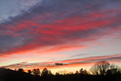 175/365 November 13, 2015 (J. H. Stilson) Tags: birthday sky sunlight colors clouds sunrise blood colorphotography bruise fridaythe13th 1113 bloodred 365project idesofnovember