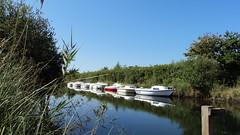 Carcans (Cedric Biennais) Tags: boat cedric bateau marais hourtin gironde carcans biennais