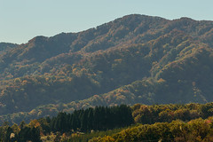 12Seya Highland (anglo10) Tags: field japan kyoto autumnleaves