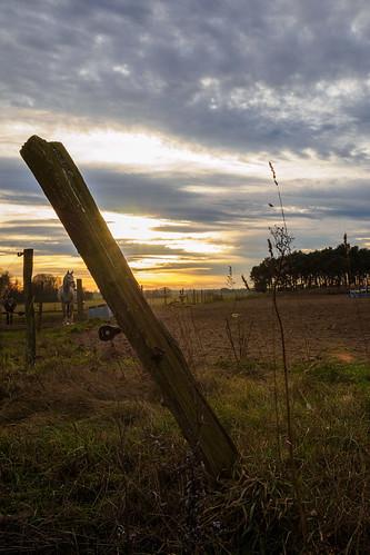 Sonnenuntergang im Fläming 2