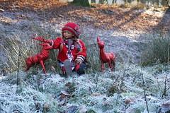 Tivi und das Rotwild ... (Kindergartenkinder) Tags: dolls himstedt annette kindergartenkinder park herbst sony ilce6000 personen kind dülmen tivi
