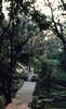 Hotel garden (SteveInLeighton's Photos) Tags: transparency ektachrome thailand pattaya 1983 april hotel garden chonburi
