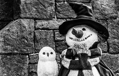 Snowman (_John Hikins) Tags: blackandwhite black white bw nikon d5500 18300 18300mm 18300c nikkor florida snowman harrypotter harry potter grin smile owl universal studios explore explored