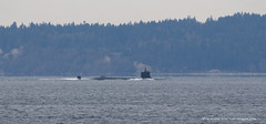 1431_Sub (lg evans Maritime Images) Tags: ©lgevans lgevans lge maritimeimages submarine black underway pugetsound shippinglanes water military