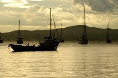 A tranquilidade (leal.fellipe) Tags: santoantoniodelisboa floripa florianópolis ilhadamagia pordosol mar barcos nikon nikond7000