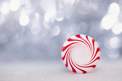 :: peppermint :: (mjcollins photography) Tags: peppermint tinsel christmas upclose depthoffield dof blurry creamy background holiday bokeh macro monday