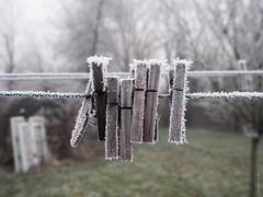 Abandon de Clothespins gelées (F.Heusele) Tags: nature seineetmarne france frozen givré hiver glacé clothespins pinces