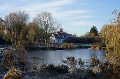 A frosty morning at Willian Pond (Jayembee69) Tags: willian village hertfordshire herts england uk unitedkingdom letchworth pond frost ice winter cottage frozen rime