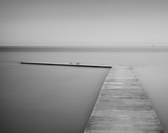 Patience (jaygilmour11) Tags: lake marine west kirby jetty black white blackandwhite longexposure sea ocean sky cloud leefilters bigstopper seagull tern wooden gull peaceful serene landscape seascape