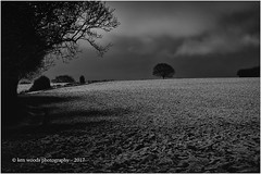 2017_365-12 - Itchingfield Tree (at night) (Kenny Boy1) Tags: tree itchingfield sussex westsussex snow night mono blackandwhite 365 2017 lonetree explore