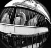 Pour le repas du soir (wordman760) Tags: paris france minolta x370 semifisheyelens kodak tmz 3200asa professional 35mm monochrome negative film outdoors daylight july 1990 slr