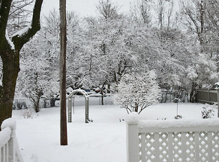 ** C'est l'hiver...**