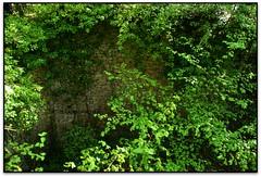 Entreveient la Poua Vilardell, Castellcir (el Moianès) (Jesús Cano Sánchez) Tags: elsenyordelsbertins canon eos20d tamron18200 catalunya cataluña catalonia barcelonaprovincia moianes castellcir poua pozo glaç hielo ice senderisme senderismo hiking gebracb remuntadatenes4