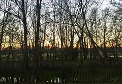 Just Made It Fence (NJKent) Tags: saveearth fence sunset ellispark riversidepark leicester eastmidlands uk