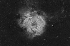 Rosette Nebula (adambutko) Tags: rosette nebula ngc2237 hydrogen alpha nikon d5300 astrophotography milky way