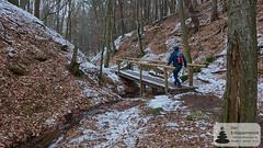 Steckeschlääferklamm im Binger Wald