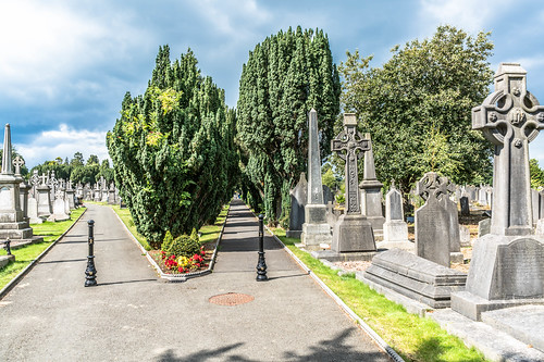 GLASNEVIN CEMETERY [MY FIRST DAY USING THE NEW SONY A7RMkII] REF-107425