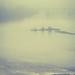 Chippewa River in fog