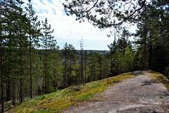 A lookout post along the Haukankierros trail, Nuuksio national park (Espoo, 20120520) (RainoL) Tags: forest espoo finland geotagged spring may u fin nuuksio 2012 uusimaa 201205 haukkalampi nuuksionationalpark 20120520 geo:lat=6031449000 geo:lon=2451452000