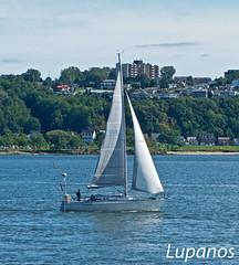 plaisir de septembre (lupanos) Tags: voyage qubec voilier fleuve lvis