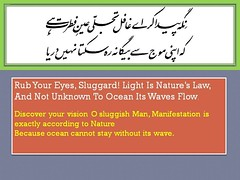 iqbal poetry 3 (shafique rehman shakir) Tags: poetry urdu iqbal allama