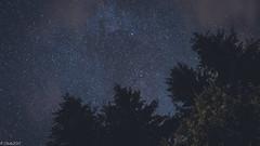 ...Stars...Milkyway... (clearfotografie) Tags: detail nature dark stars deutschland nikon natur sachsen dunkel sterne erzgebirge d600 nikkorsc50mmf14