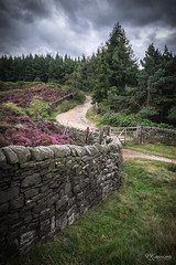 Wall (KRLandscapes) Tags: uk trees cloud house storm stone wall forest landscape moody fuji district hell peak bank pines plantation fujifilm moors stonewall 1855 bakewell chatsworth moorland beeley xt1