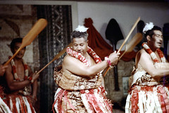 29-129 (ndpa / s. lundeen, archivist) Tags: people man color men film festival fiji 35mm clothing ribbons dancers dancing stage traditional nick group performance feathers paddle culture skirt suva lei clothes southpacific oar 29 tradition leis 1970s performers 1972 skirts oars paddles dewolf oceania fijian pacificartsfestival pacificislands festivalofpacificarts southpacificislands nickdewolf photographbynickdewolf festpac pacificislandculture southpacificfestival reel29 southpacificartsfestival southpacificfestivalofarts feathersinhishair fiji72 feathersintheirhair