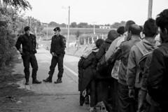 Meter to Croatia (chat des Balkans) Tags: blackandwhite bw baby news kids children war noiretblanc refugees serbia sid police croatia conflict bebe enfants asylum humanitarian ngo syrian catastrophe croatie policemen hrvatska srbija refugies humanitaire asylumseeker asile serbie bapska policiers id croatianpolice demandeurdasile syrianrefugees warinsyria syrianwar guerreensyrie berkasovo policecroate conflitsyrien refugiessyriens homanitariancatastrophe catastrophehumanitaire