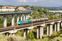 335-019 (evarujo) Tags: barcelona train tren railway canonef2470mmf28lusm tarragona adif cantunis vossloh constantí canoneos7d transfesa euro4000 335019 santsadurnídanoiacataluñaespaña altpenedessantsadurnídanoiacataluñaespaña