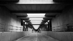 Le chantier du sicle (Anthonicimes) Tags: suisse nb genve orientation ceva lieux horizontale moyendetransport techniquedephoto