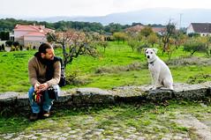 Penela da Beira (Gail at Large | Image Legacy) Tags: portugal paulo viseu 2015 gailatlargecom peneladabeira maridopaulo icethedog