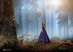 Creative Composition - Rizera (Willian Aires) Tags: nature girl landscape natureza princesa debutante pricess creativecomposition willianaires