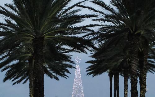 "Resort ""Christmas tree"""