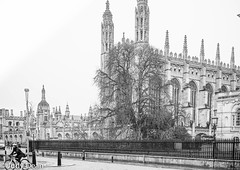 Cambridge (judy dean) Tags: judydean 2017 sonya6000 cambridge kingscollege chapel street cyclist tree university city stone turrets spires windows people
