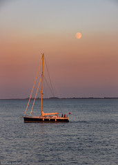 Sailing under the moon