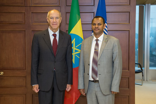 WIPO Director General Meets Ethiopia's Minister for Science and Technology